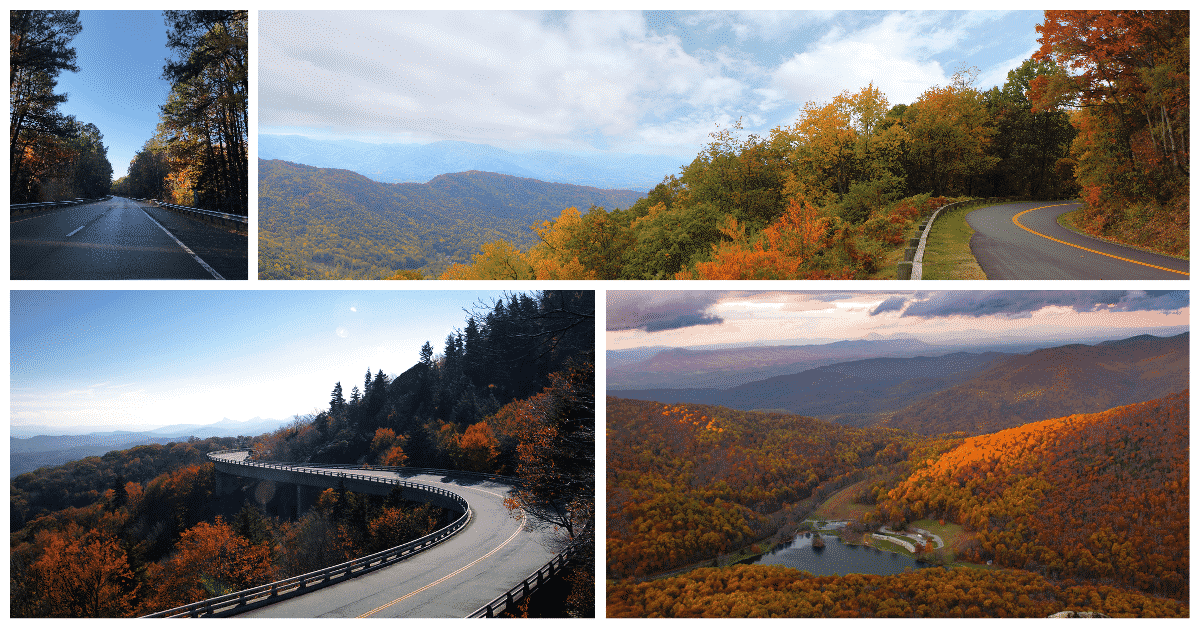 6 Phases Of Fall Foliage In Asheville Nc