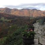SW Fall foliage Colors