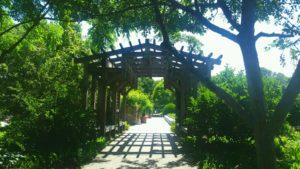 NC Arboretum, Arbor with walkway beneath