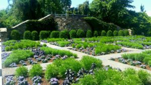 Gardens and walkways with green plants and flowers