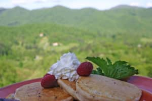 Three pancakes overlapping on red plate. Topped with two raspberries and whipped cream. Green hills in background.