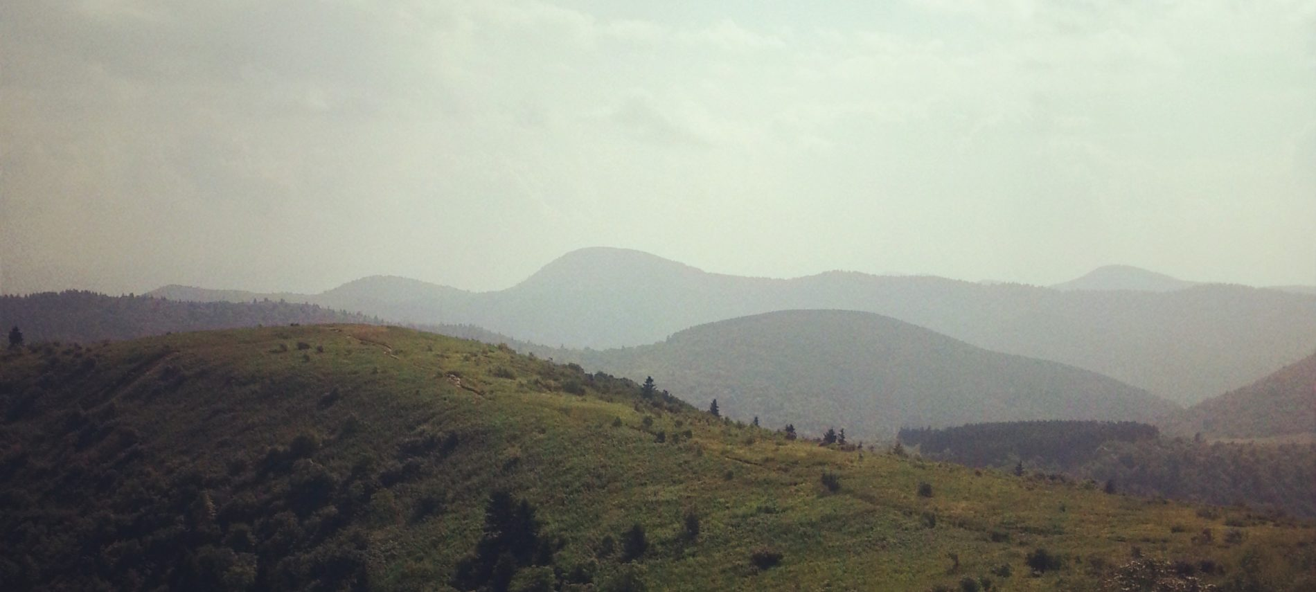 view of balds