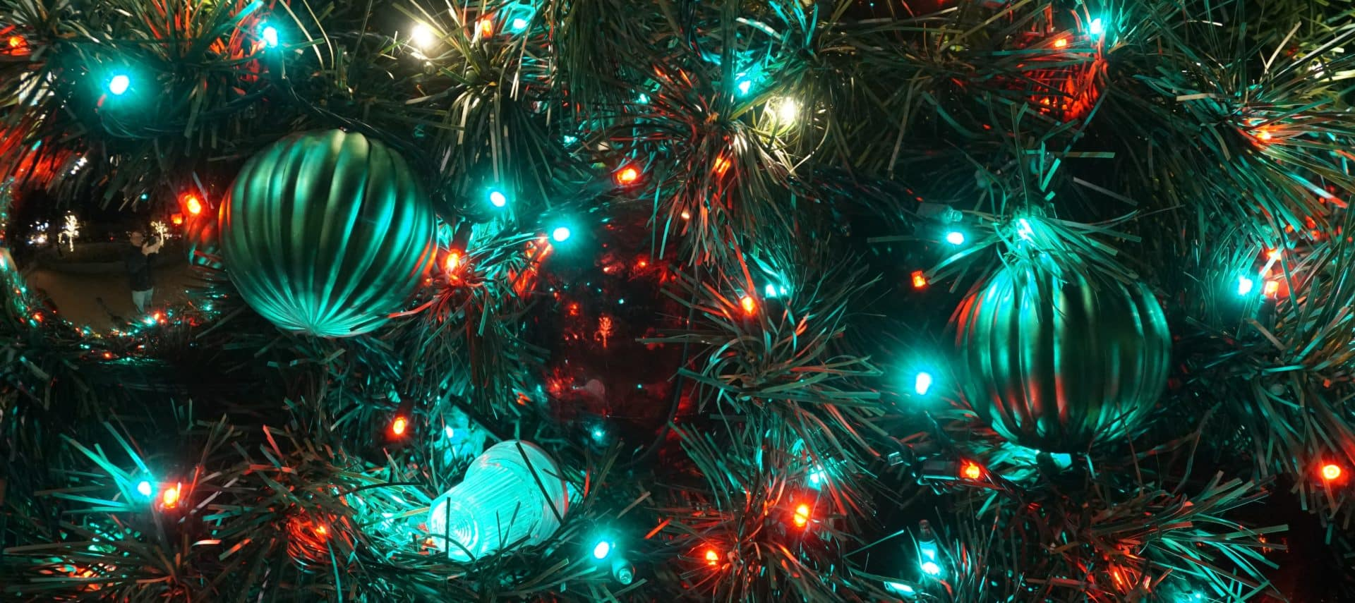 Close-up view of a green christmas tree covered in red, green and white twinkling lights