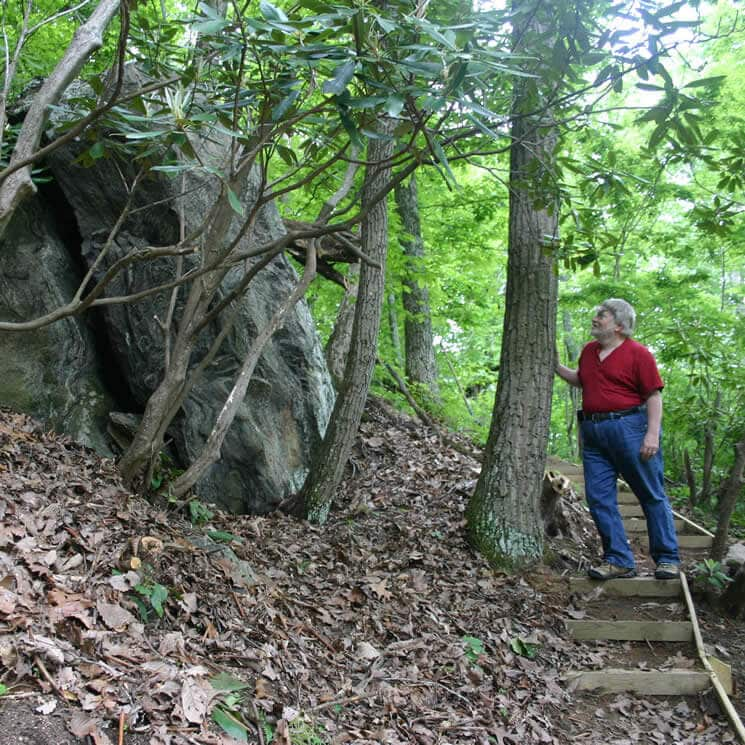 Man on wooden stairs looking at a large boulder surrounded by trees.