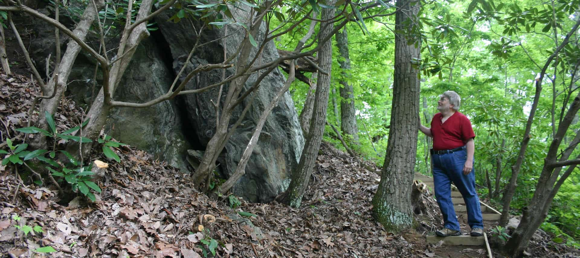 A man in a red shirt stands on wooden stairs looking at a large boulder surrounded by trees.