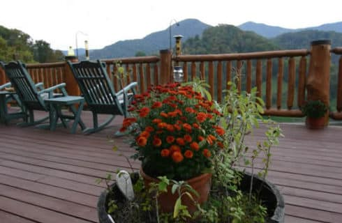Pretty potted orange mums in a large wooden barrel container with other greenery on a wooden deck.