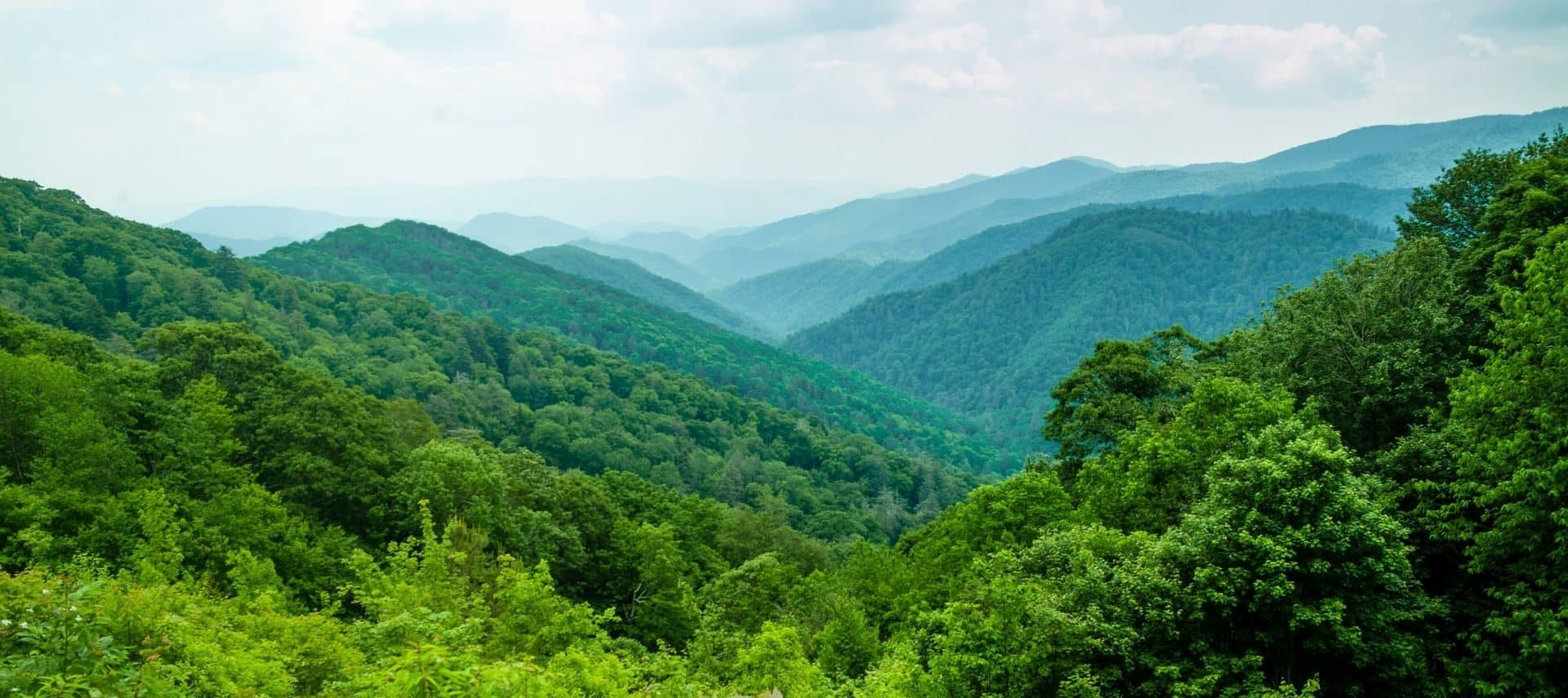 Smoky Mountains in springtime with lush green vegetation and layers of mountains